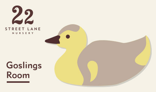 22 Street Lane Nursery - See Our Goslings Room