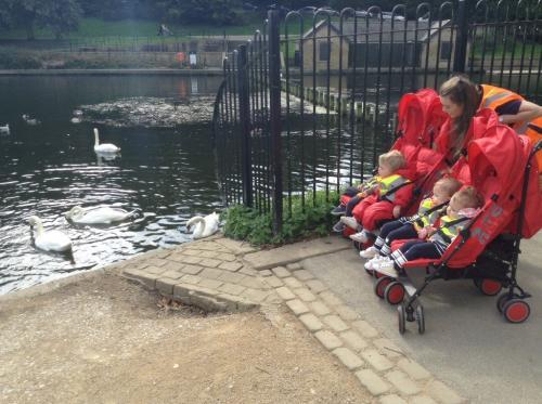 22 Street Lane Ducklings Visit Roundhay Park   22 Street Lane Nursery, Leeds